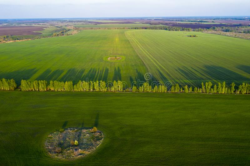 Vårfält, långa skuggor från landningar på solnedgången från quadrocopteren royaltyfri fotografi