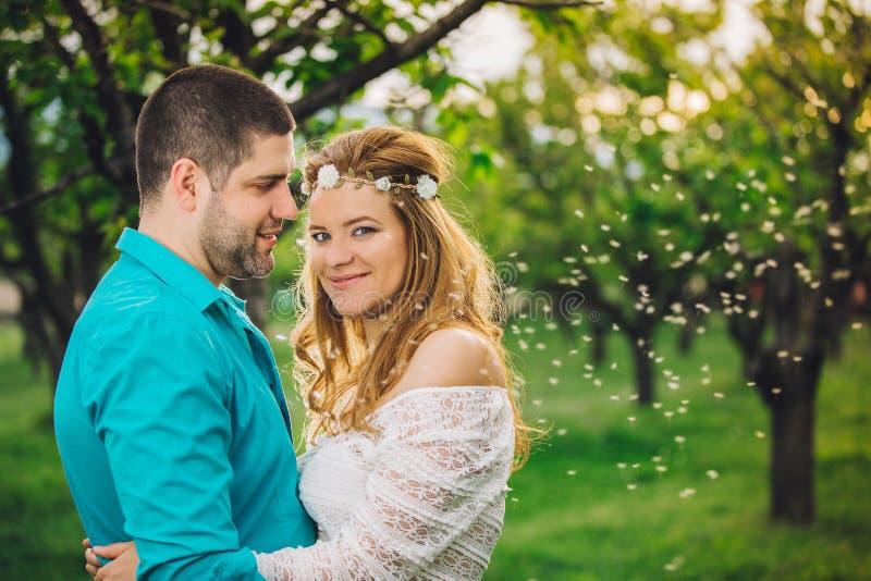 Vårförälskelsepar som kramar och kysser i körsbärsrött trä på solnedgången royaltyfri bild
