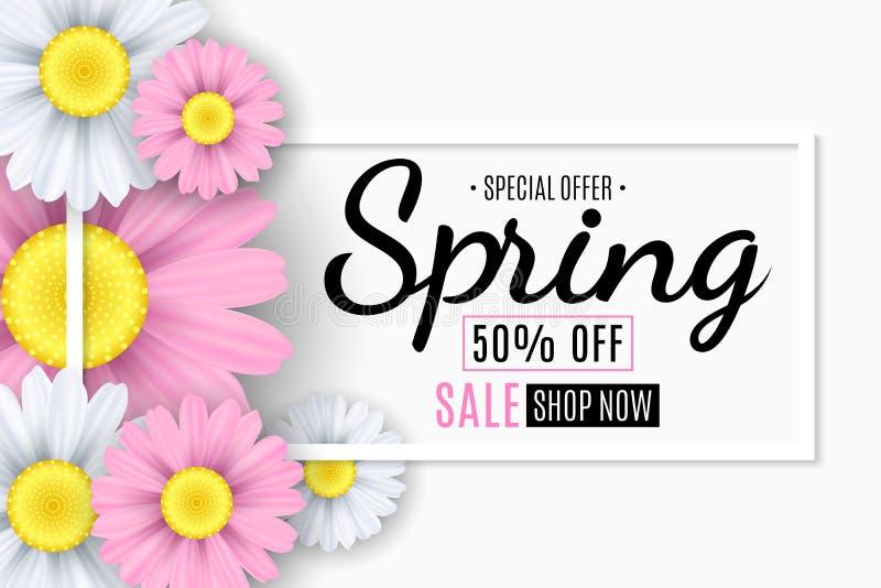 Vårförsäljningsbaner Fyrkantig vit ram Rosa och vita blommor av kamomillen Säsongsbetonad reklamblad Specialt erbjudande också ve stock illustrationer