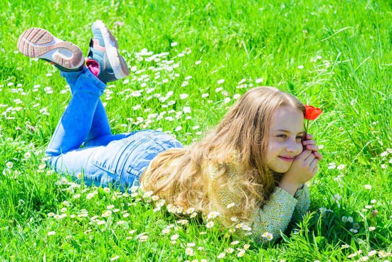 Vårfröjdbild av lilla flickan som lägger i gräs som rymmer den röda tulpan som poserar för kamera Barnet tycker om våren medan fotografering för bildbyråer