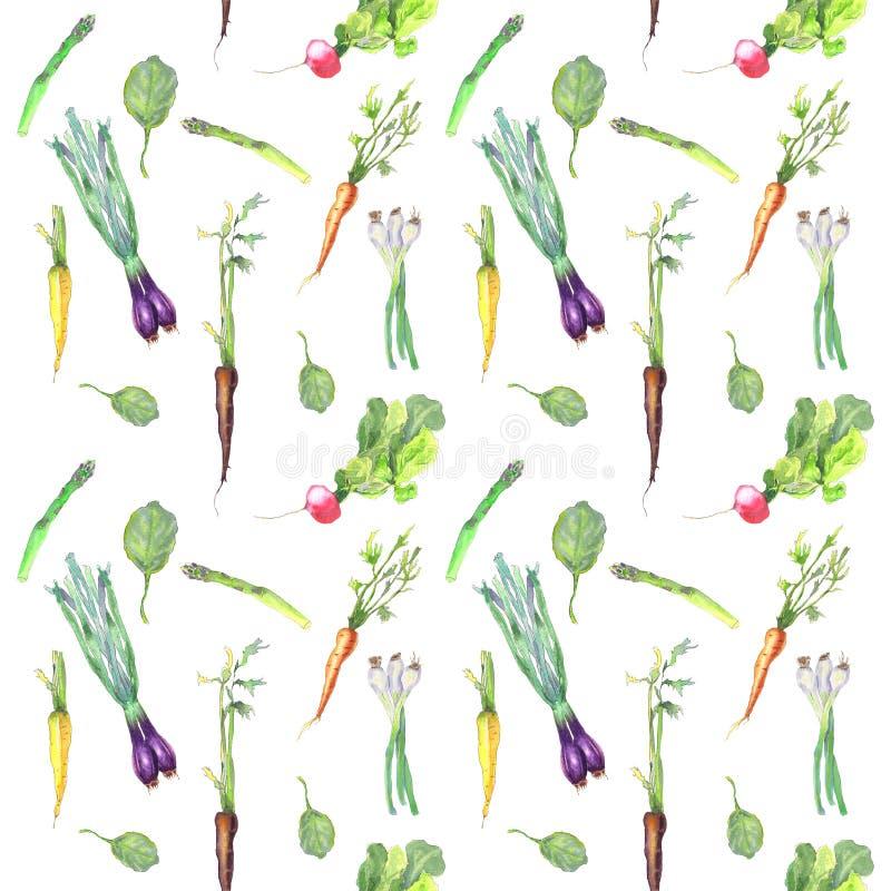 Vårgrönsakmodell stock illustrationer