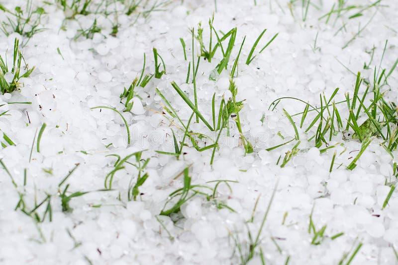 Vårhagel på grön gräsmatta arkivbild