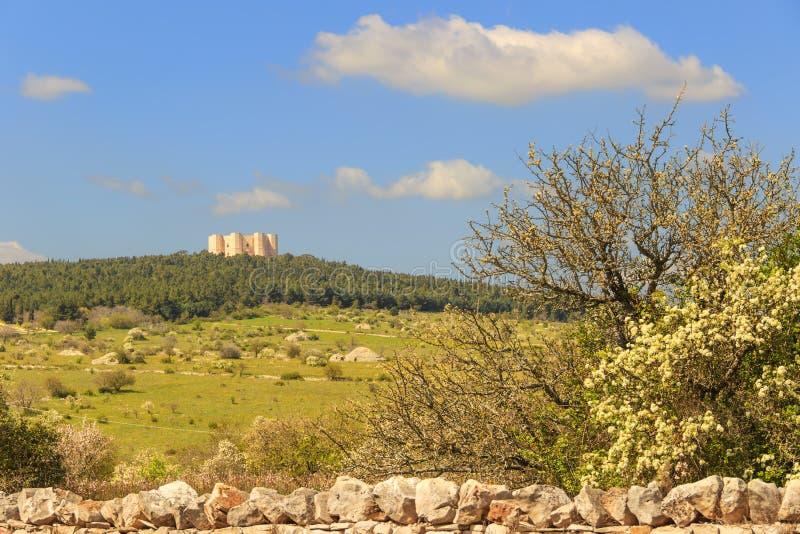 Vårlandskap: Alta Murgia National Park I bakgrunden Castel del Monte Apulia-ITALIEN (Andria) - royaltyfria foton