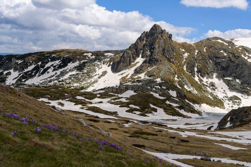 Vårlandskap av den Rila nationalparken, Bulgarien royaltyfria bilder