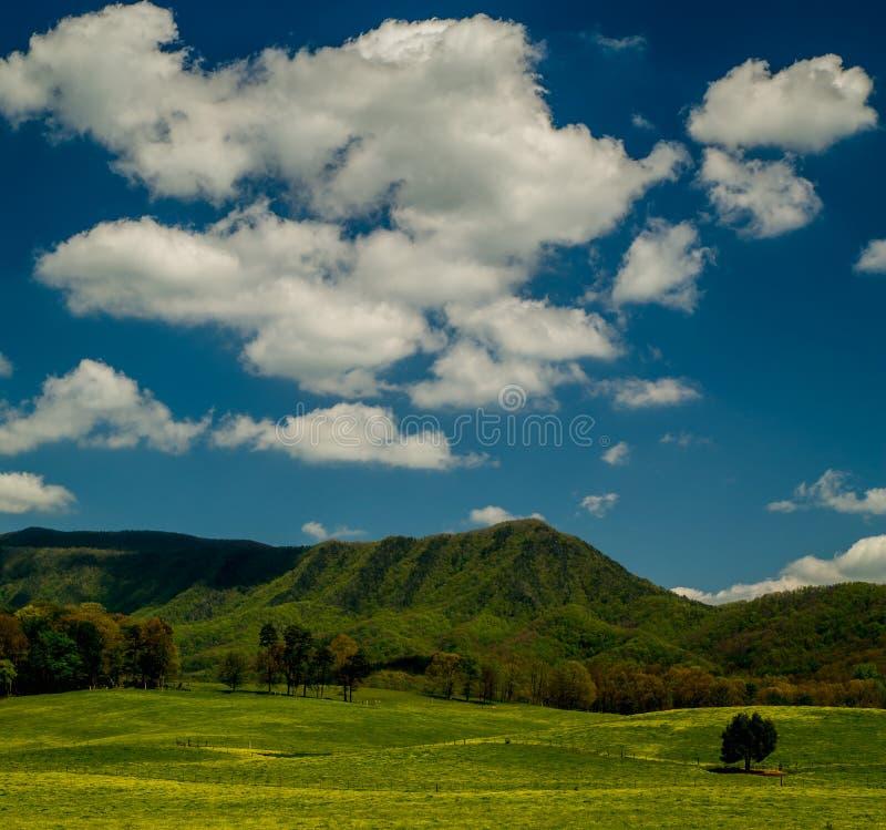 Vårlandskap, engelskt bergområde royaltyfria foton