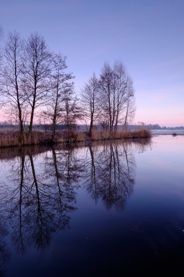 Vårlandskap och flod royaltyfri foto