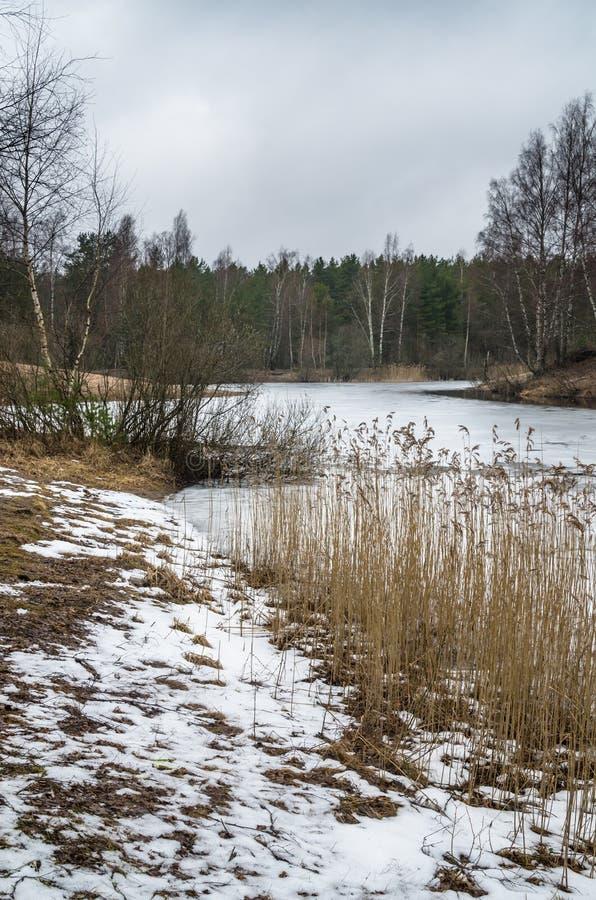 Vårlandskap på den wood sjön arkivbilder