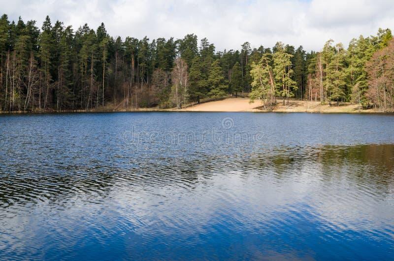 Vårlandskap på den wood sjön arkivbild