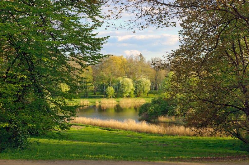 Vårlandskapet av Belovezhsky parkerar fotografering för bildbyråer