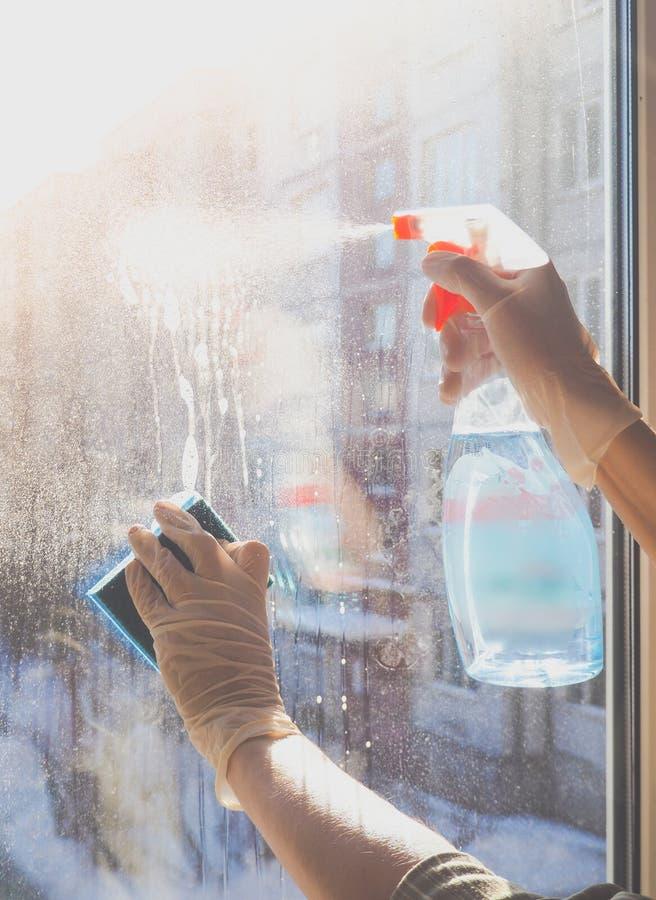 Vårlokalvård - lokalvårdfönster Händer för kvinna` s tvättar fönstret som gör ren royaltyfri bild