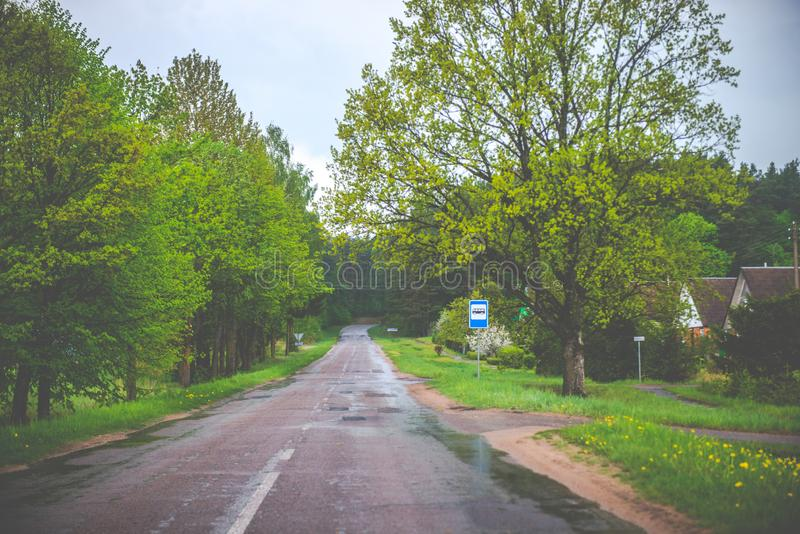 Vårnatur och väg arkivbild