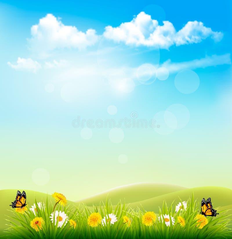 Vårnaturbakgrund med ett grönt gräs och en blå himmel vektor illustrationer