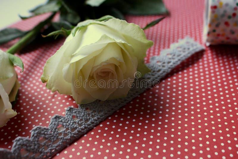 Vårpingstliljan lämnar skrivbordband royaltyfri fotografi