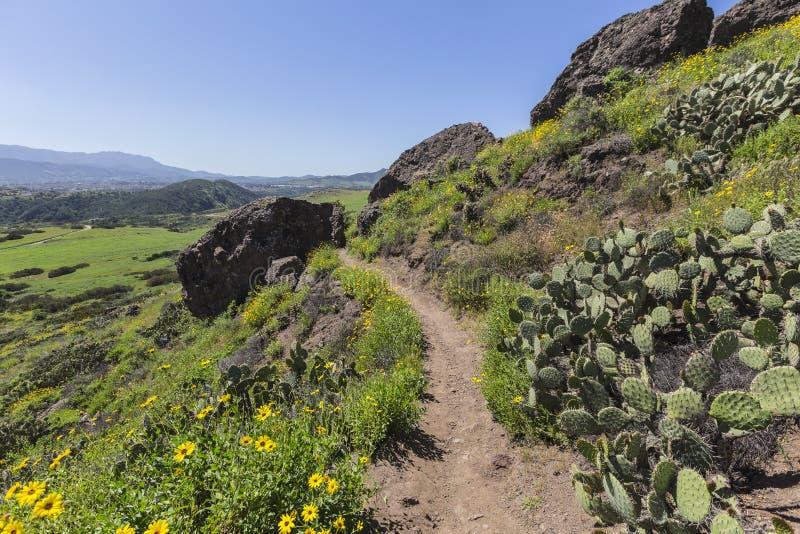 Vårslinga i Thousand Oaks Kalifornien royaltyfria foton