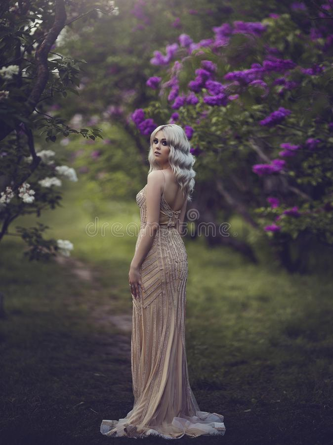 Vårstil Härlig sinnlig flickablondin i vår den blomstra dagträdgården kan spring soligt Ung flicka i en guld- elegant klänning royaltyfria foton