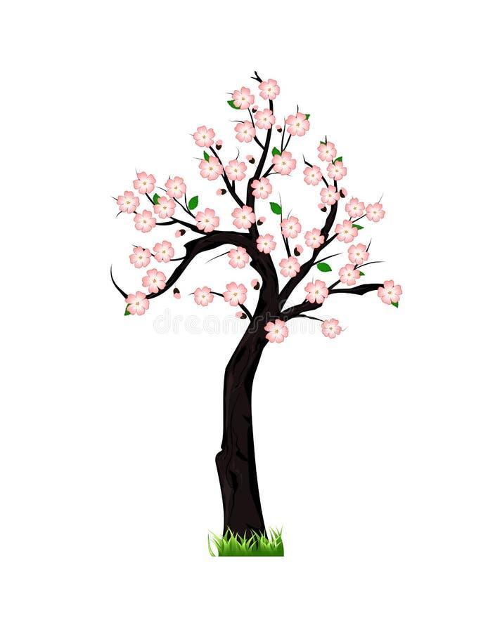 Vårträd i blomning royaltyfri illustrationer