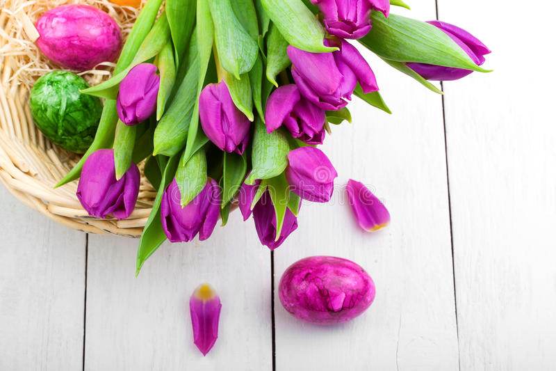 Vårtulpan och påskägg royaltyfria bilder