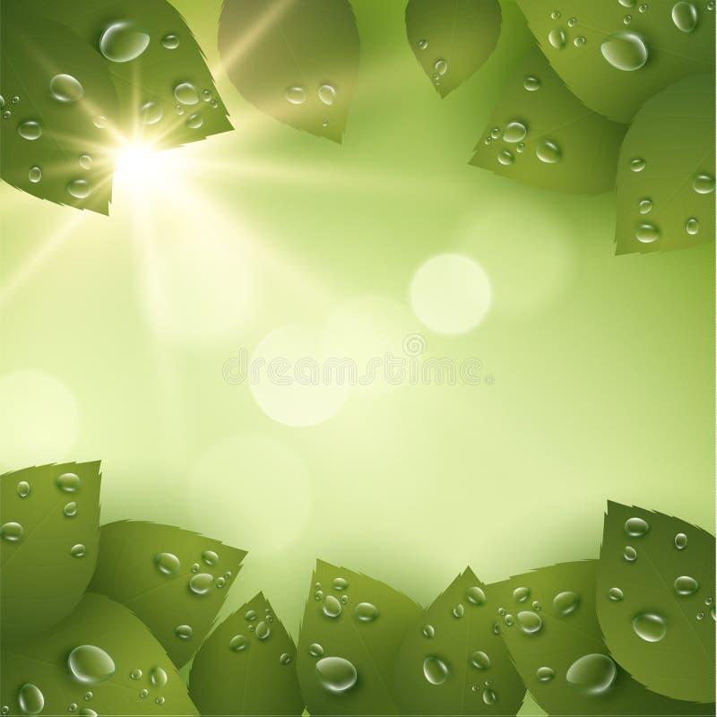 Vårvektorbakgrund EPS10 vektor illustrationer