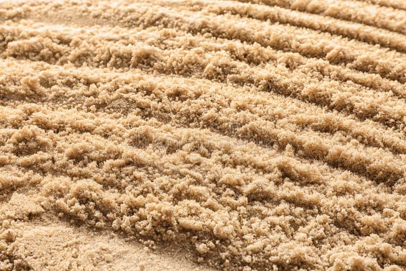 Våt sand med modellen, closeup royaltyfri bild