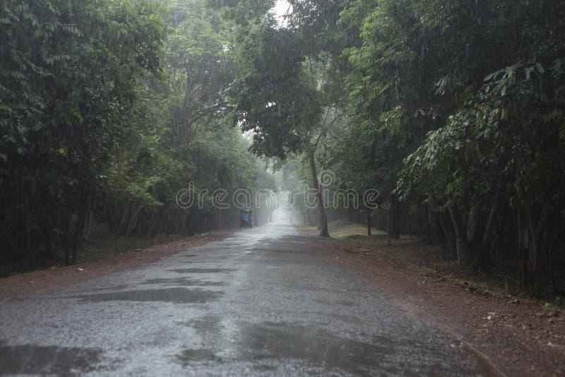 Våt väg efter monsun- och tuctuc i Siem Reap arkivfoton