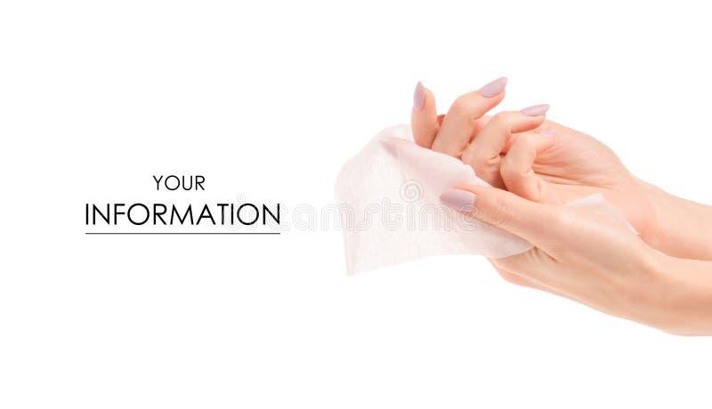 Våt wipemodell för kvinnlig hand fotografering för bildbyråer