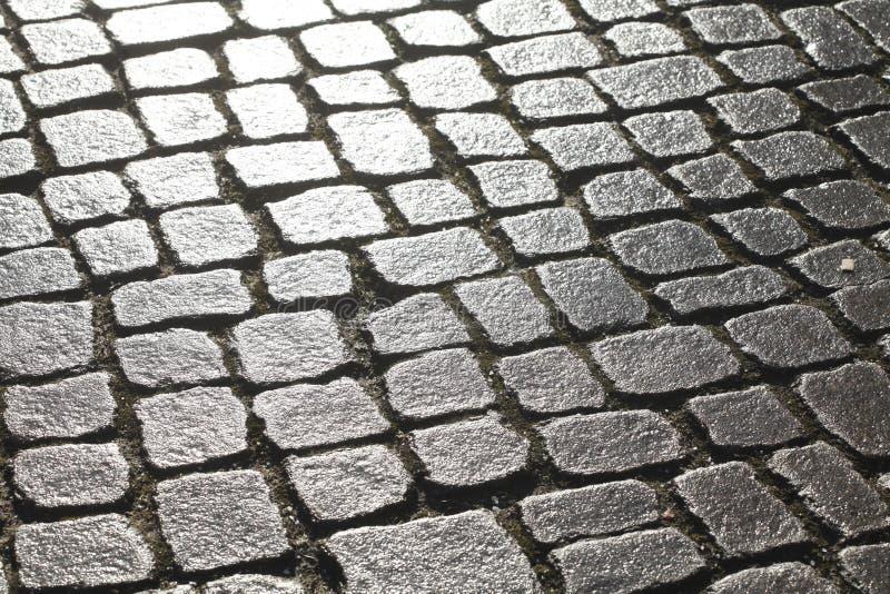 Våta blänka förberedande stenar royaltyfri bild