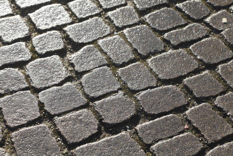 Våta blänka förberedande stenar royaltyfri fotografi