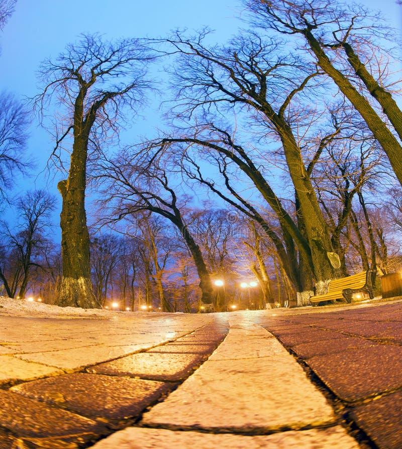 Våta förberedande stenar för nattsiktsoriginal royaltyfri fotografi
