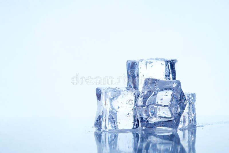 Våta fyrkantiga iskuber arkivbilder