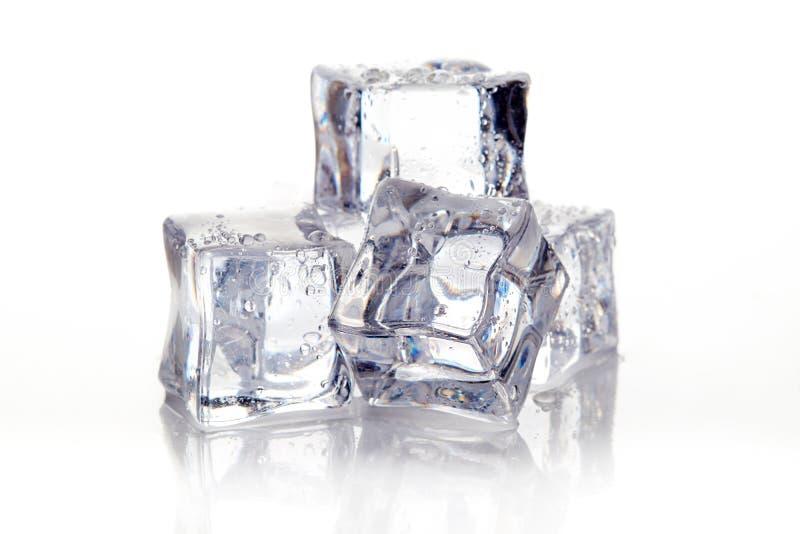 Våta fyrkantiga iskuber arkivfoto