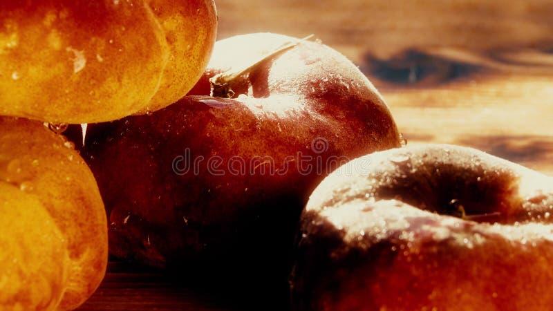Våta mogna saturn persikor på en trätabell på en solig dag Skjuten makro royaltyfria foton