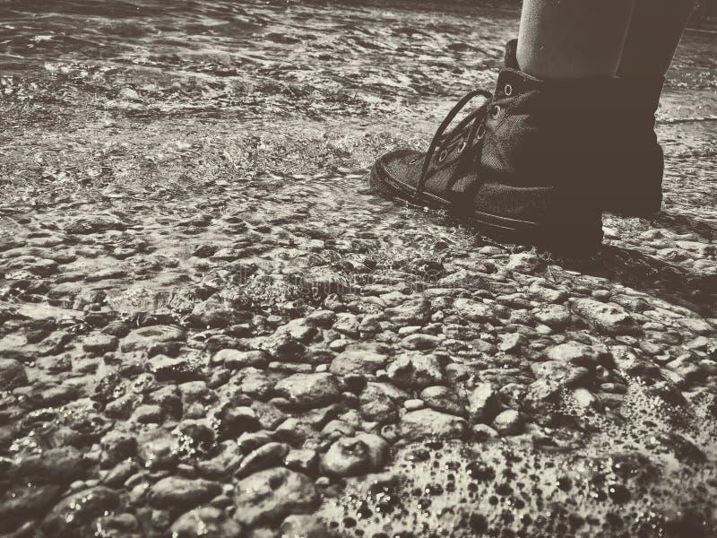 våta skor fotografering för bildbyråer