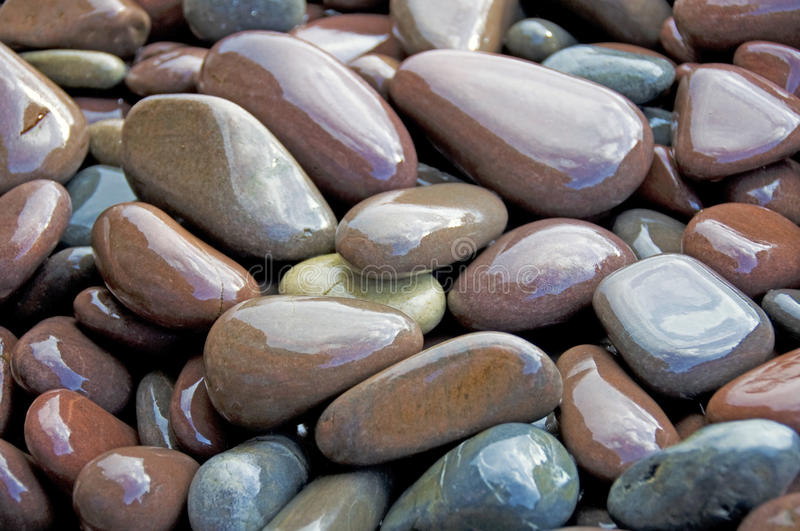 våta strandpebbles royaltyfri foto