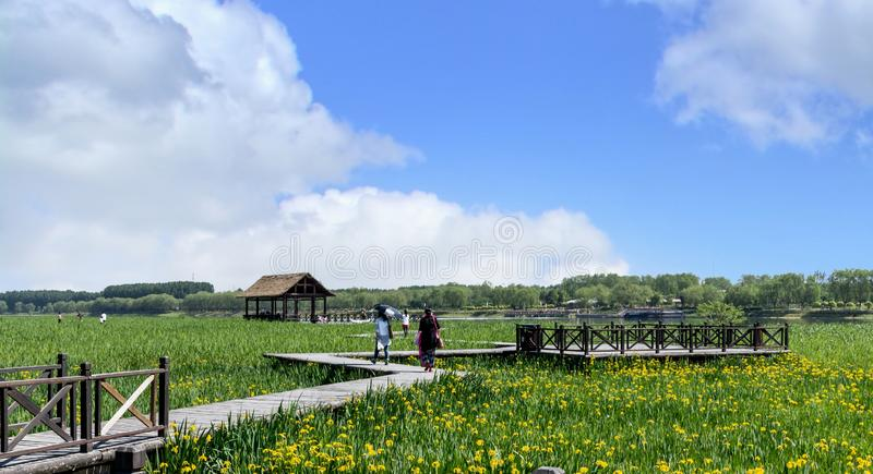 Våtmarklandskap av Peking-Hangzhou Grand Canal i Tongzhou, Kina royaltyfri foto