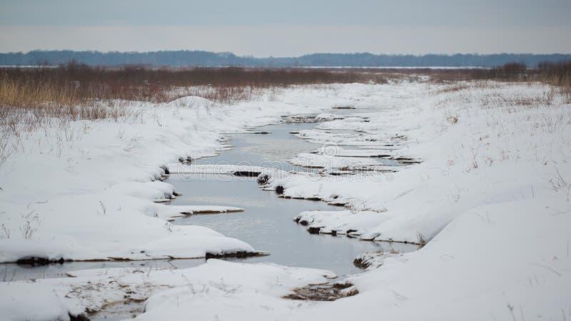 Våtmarkliten vik som försvinner in i grässlättarna - på en mulen dag för snöig kall vinter i området för Crexängdjurliv i nordlig royaltyfri bild