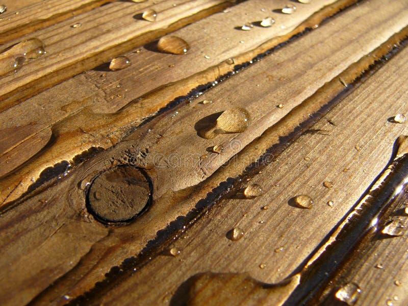 vått trä arkivbild