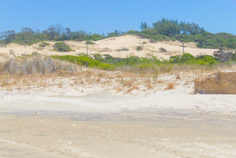 Végétation au-dessus des dunes au parc d'Itapeva en plage de Torres images stock