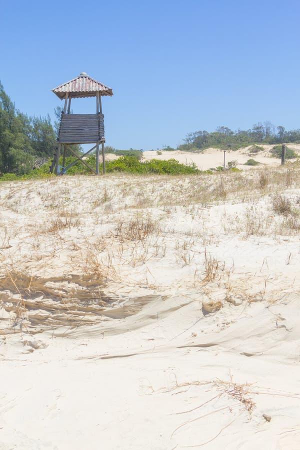 Végétation au-dessus des dunes au parc d'Itapeva en plage de Torres image stock