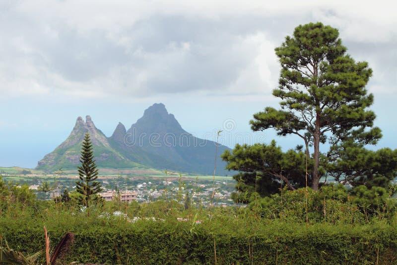 Végétation dans les tropiques Curepipe, Îles Maurice image stock