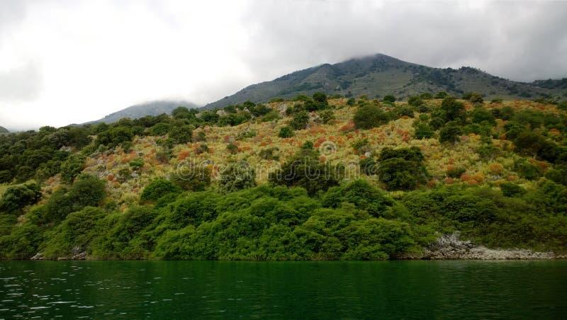 Végétation riche sur le flanc de coteau à côté du lac Kournas, Crète par temps nuageux image libre de droits