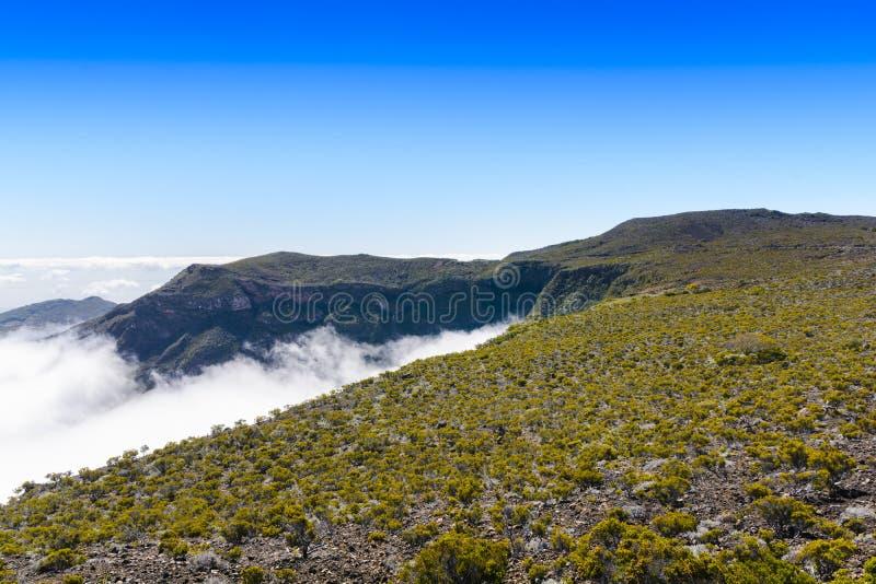 Végétation volcanique, Piton de La Fournaise, Reunion Island images stock