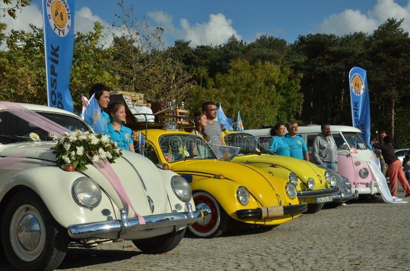 Véhicule classique de coléoptère de Volkswagen photos stock