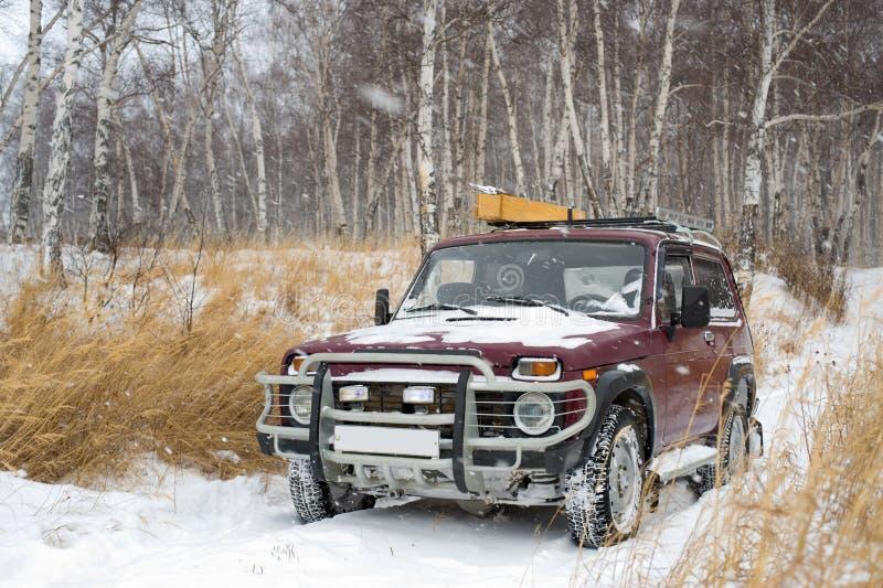 Véhicule tous terrains en forêt de l'hiver photo stock