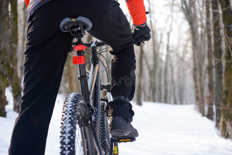 Vélo d'équitation de cycliste de montagne sur la traînée de Milou en bel hiver Forest Free Space pour le texte images stock