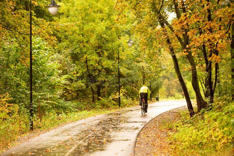 Vélo dans un parc d'automne coloré sous la pluie images libres de droits