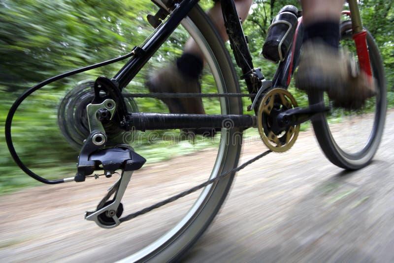 Vélo de conduite images libres de droits