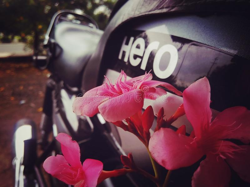 Vélo de héros photographie stock
