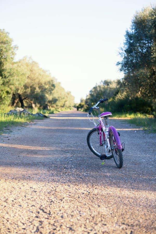 Vélo de la fille des enfants sur la route où les olives se développent dans un verger olive dans Salento, Pouilles photographie stock libre de droits