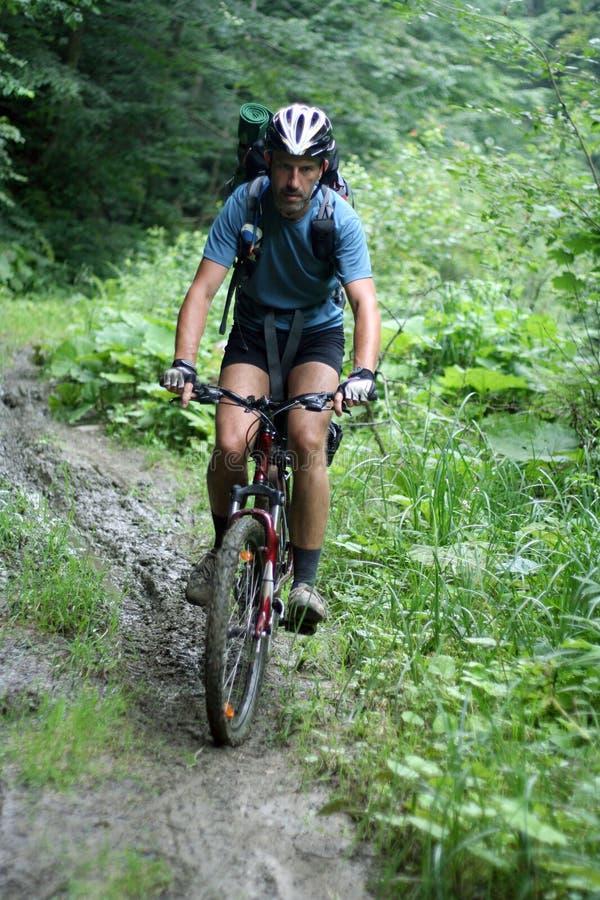Vélo de montagnes image libre de droits