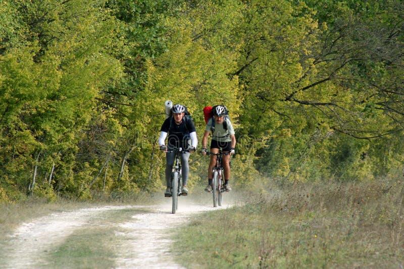 Vélo de montagnes photos libres de droits